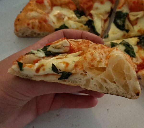 Sourdough pizza slice
